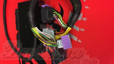 AUDI 1.8T BAM 225 PS > Plug & Play-Adapter inkl. DBW Modul EMU